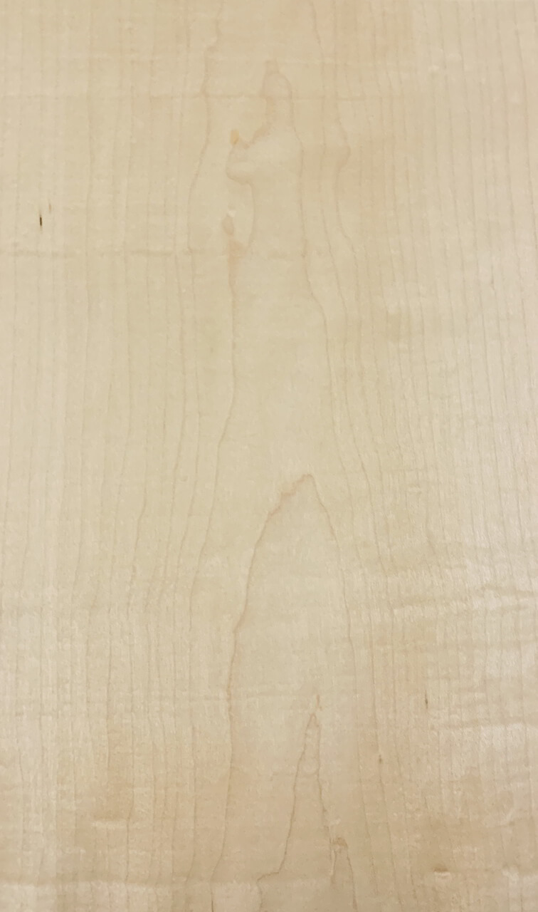 Σφένδαμος (Maple)